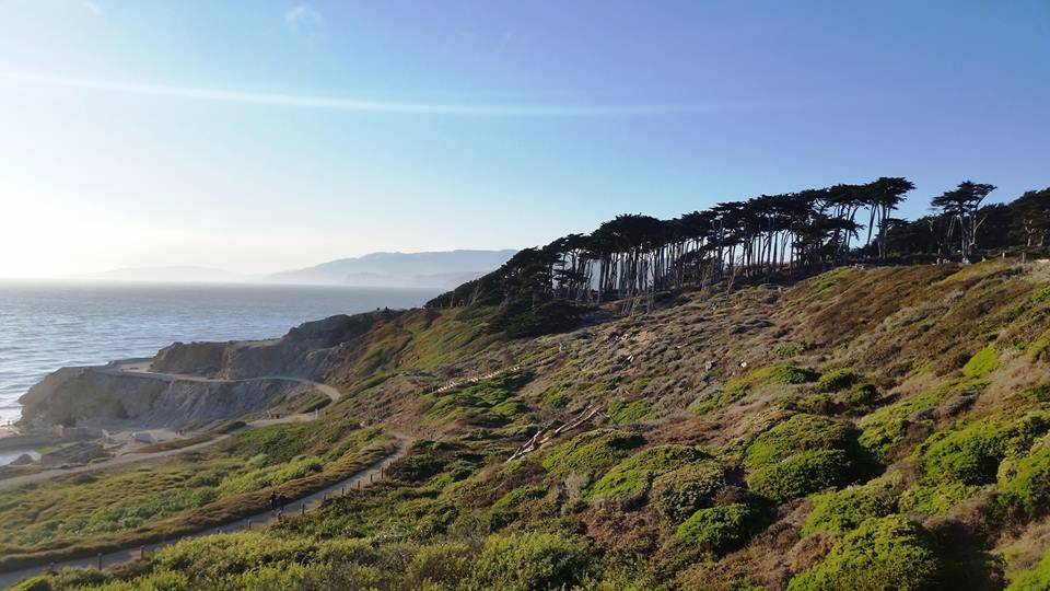 Name:  San Francisco.jpg Views: 44 Size:  84.9 KB