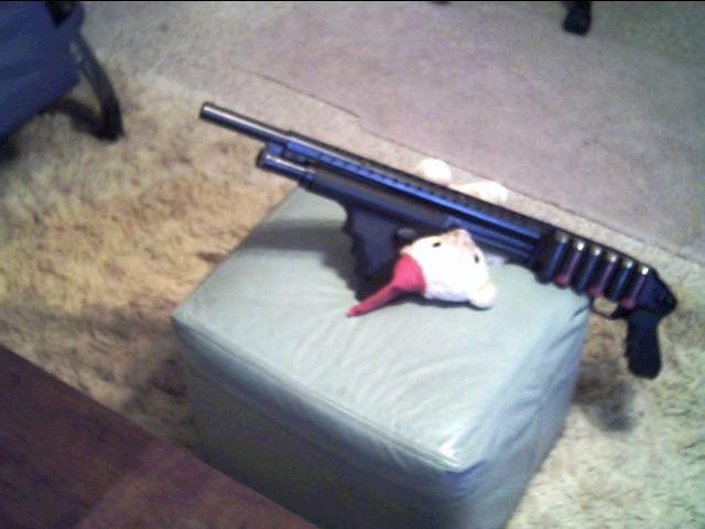 Name:  shotgun1.JPG Views: 31 Size:  35.7 KB
